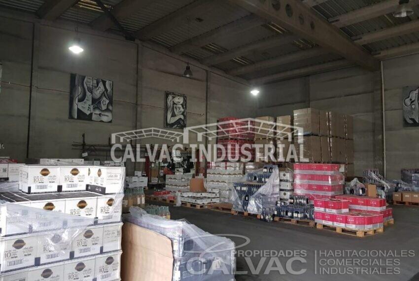 Arriendo-propiedad-industrial-con-galpon-oficinas-San-Bernardo-4